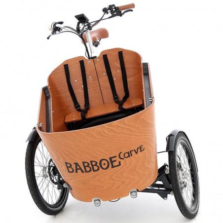 TRIPORTEUR ELECTRIQUE : Modèle BABBOE CARVE MOUNTAIN - 4699€