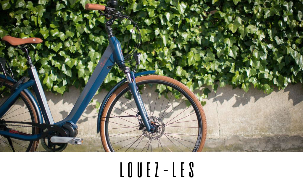 location vélo citibike